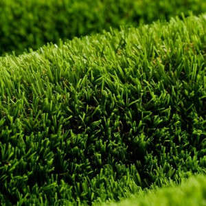 header-grass